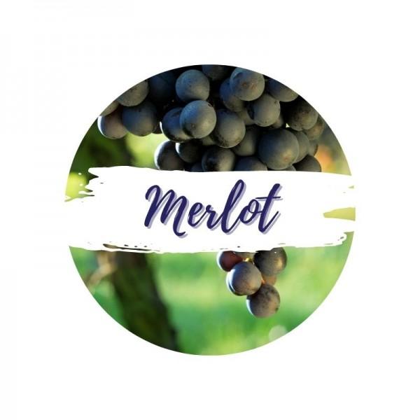 merlot-kaufen