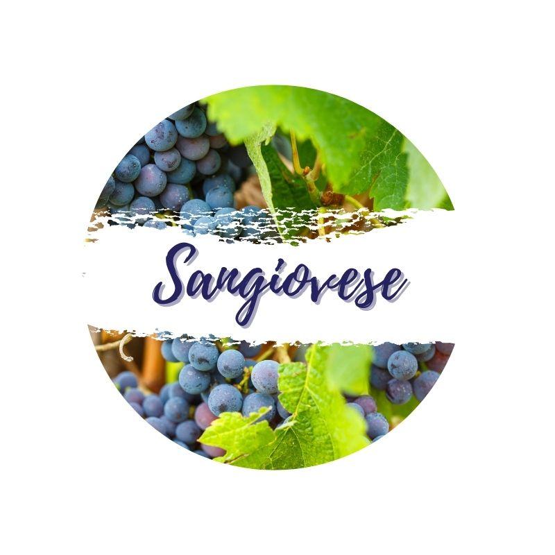 Sangiovese