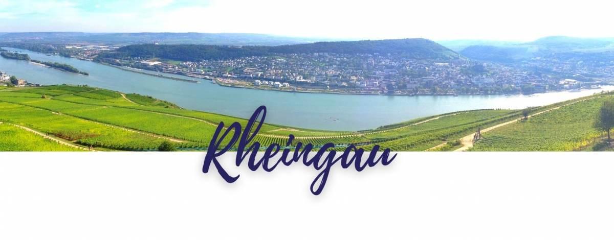 media/image/rheingau-weinbauregion.jpg