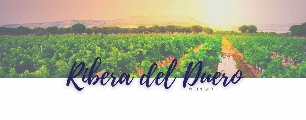 Weine Ribera del Duero online bestellen