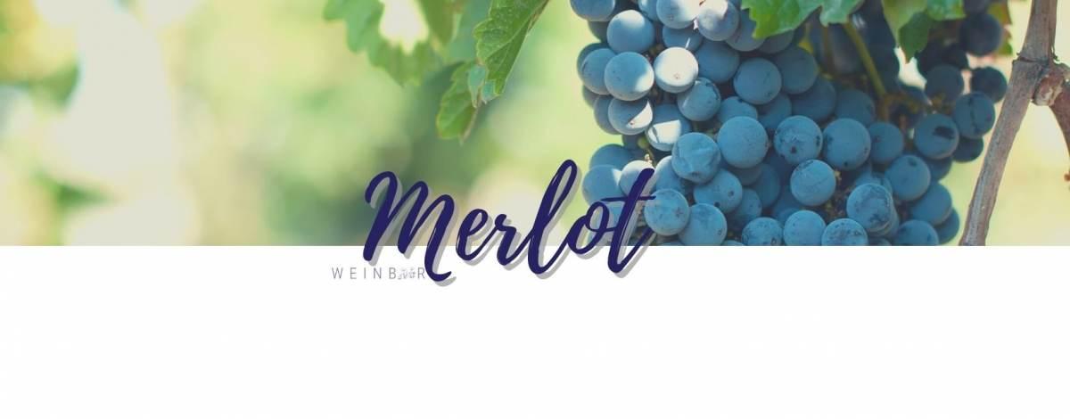 media/image/merlot-weine-kaufen-online.jpg