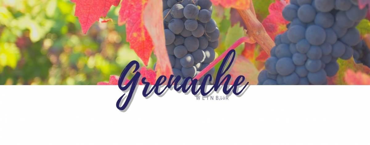 media/image/grenache-wein-online-bestellen.jpg