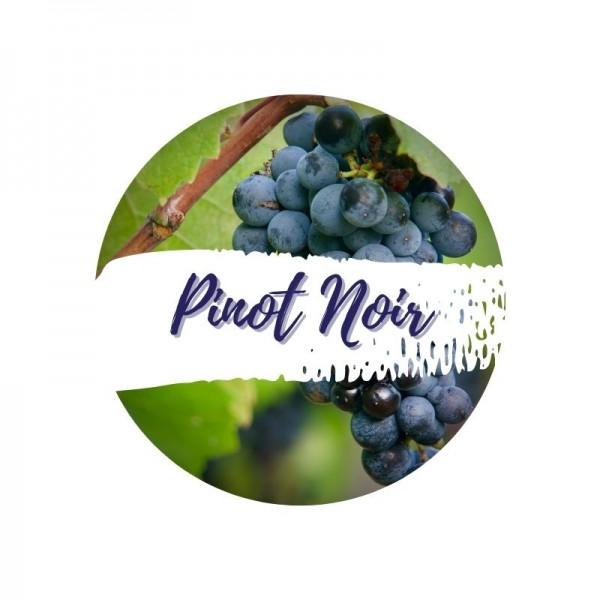 Pinot Noir - Aus roten Trauben wird Schaumwein Blanc