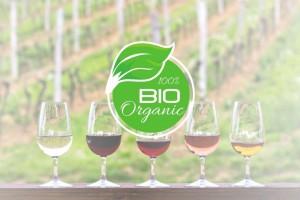 weinglaeser-in-reihe-gruenes-bio-organic
