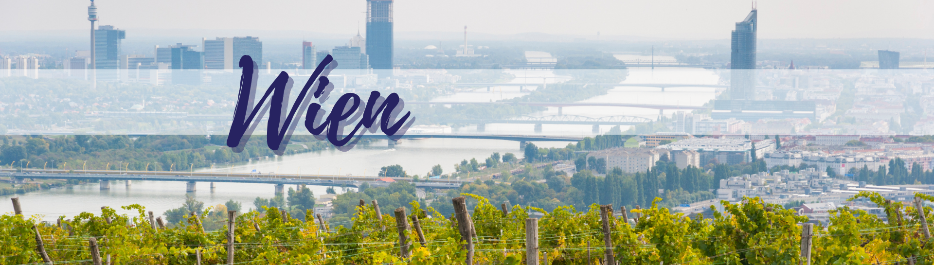 Wien Weinregion