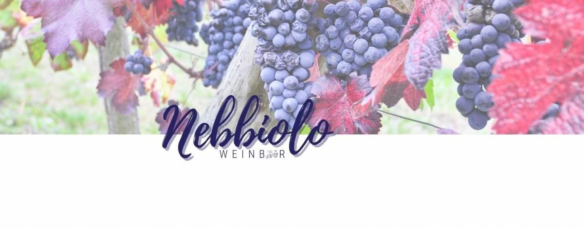 media/image/nebbiolo-weine-kaufen.jpg