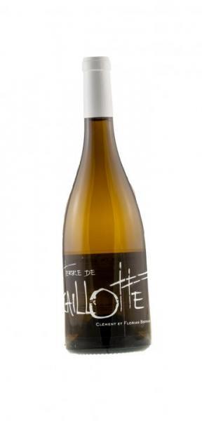 """8533_Coteaux Du Giennois Blanc """"TERRE DE CAILLOTTE"""""""